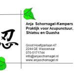 Praktijk voor Acupunctuur Shiatsu en Guasha